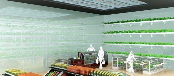 kitchen-nano-garden-design